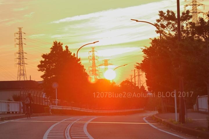 5D4_9933_170716_1207Blue.jpg