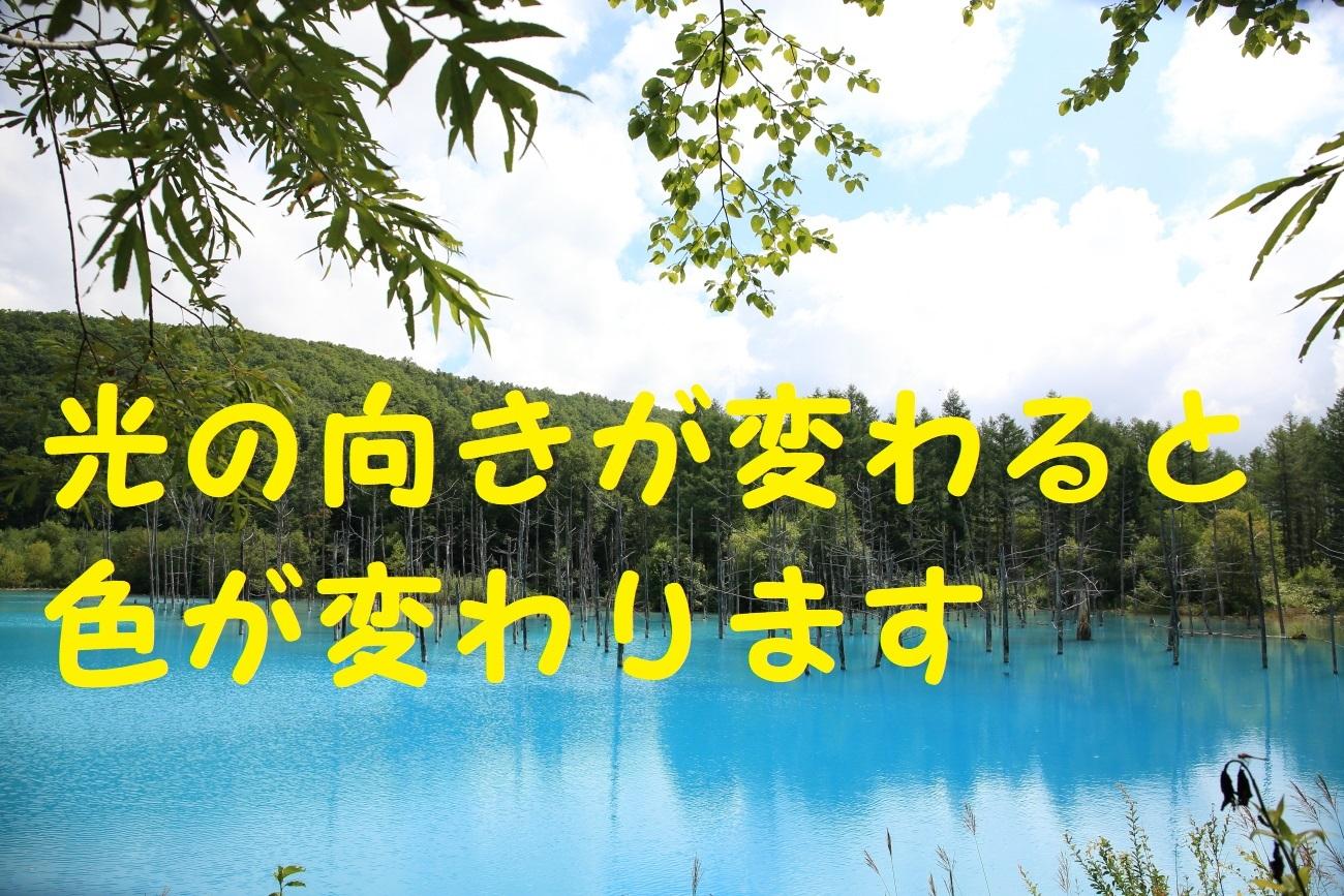 10_20170915080008eeb.jpg