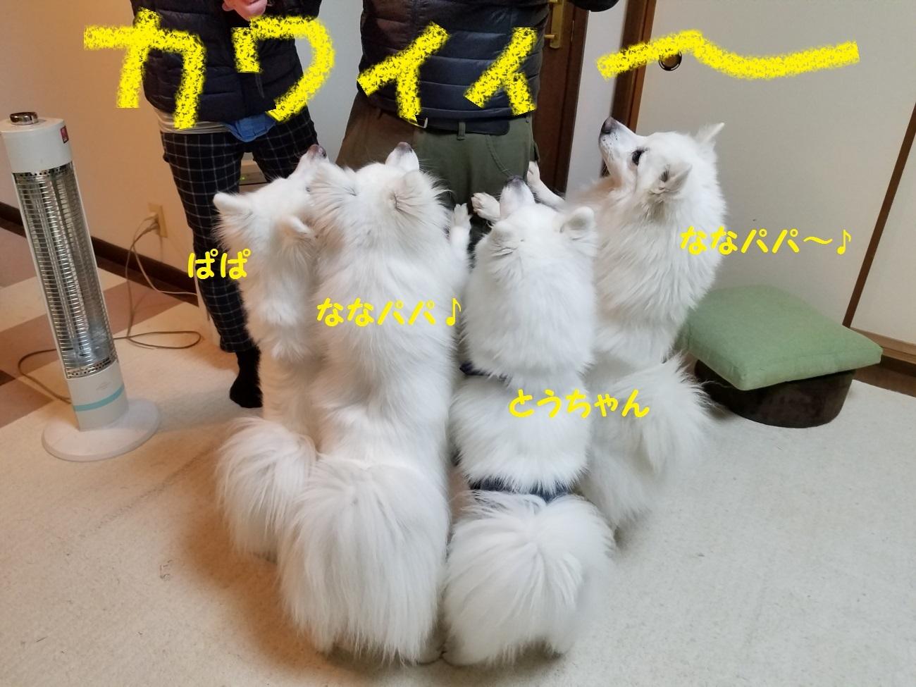 20170331_212840.jpg