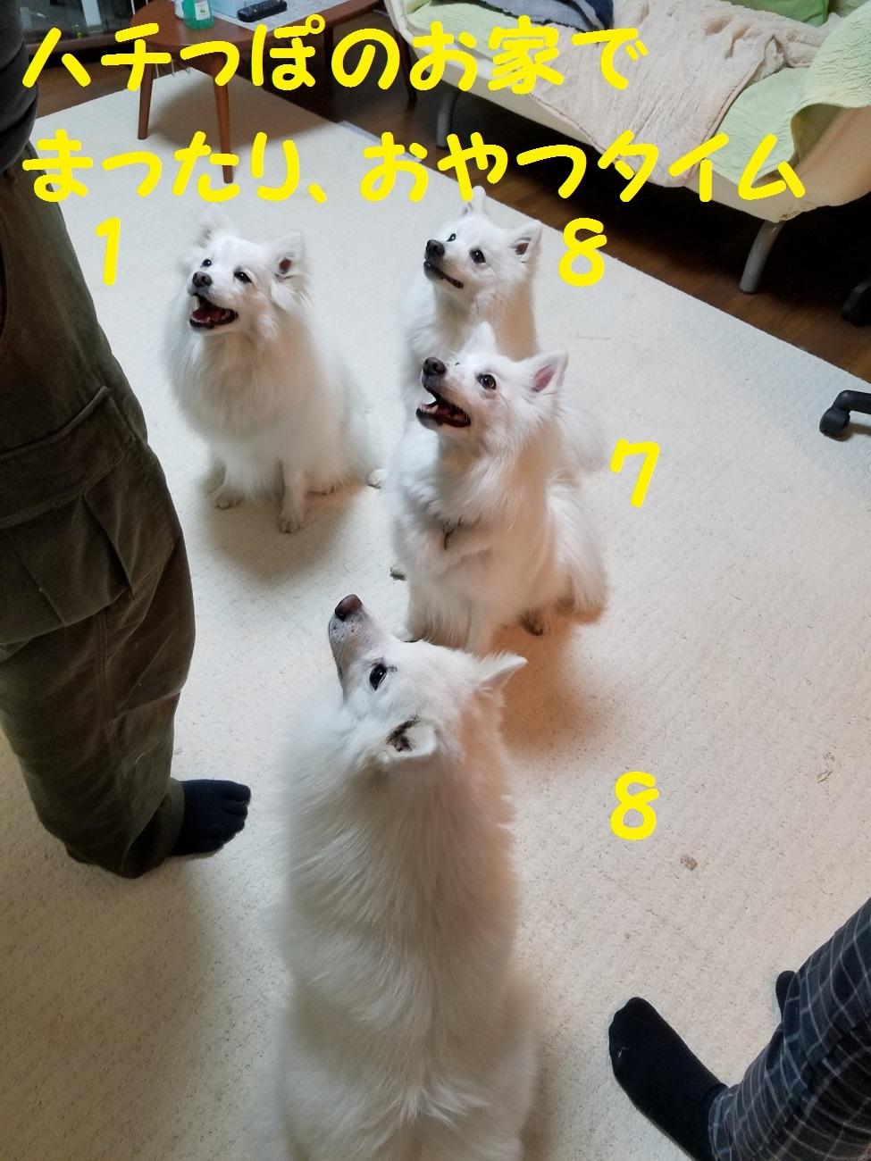 20170331_212946.jpg