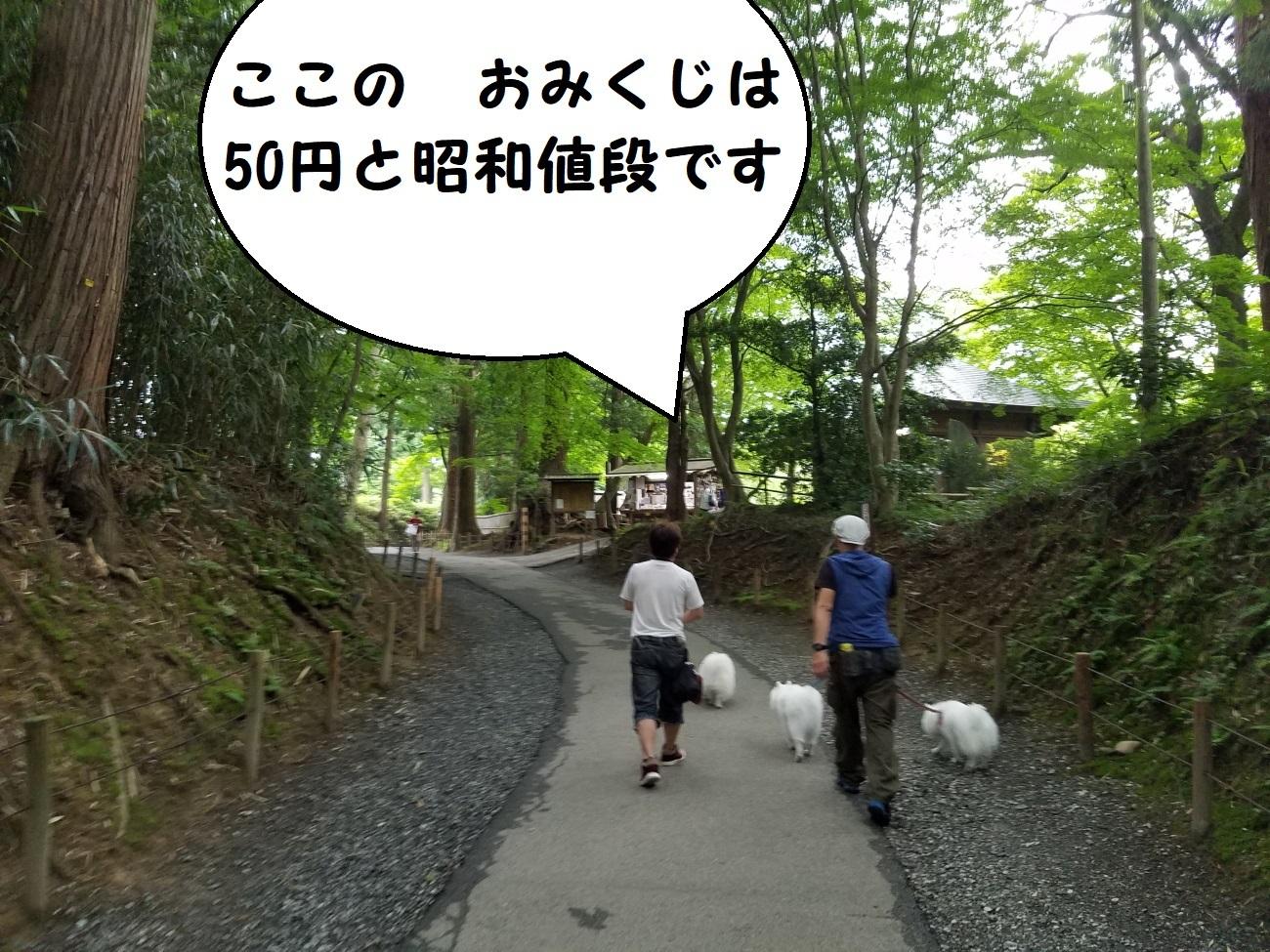 20170702_160427.jpg