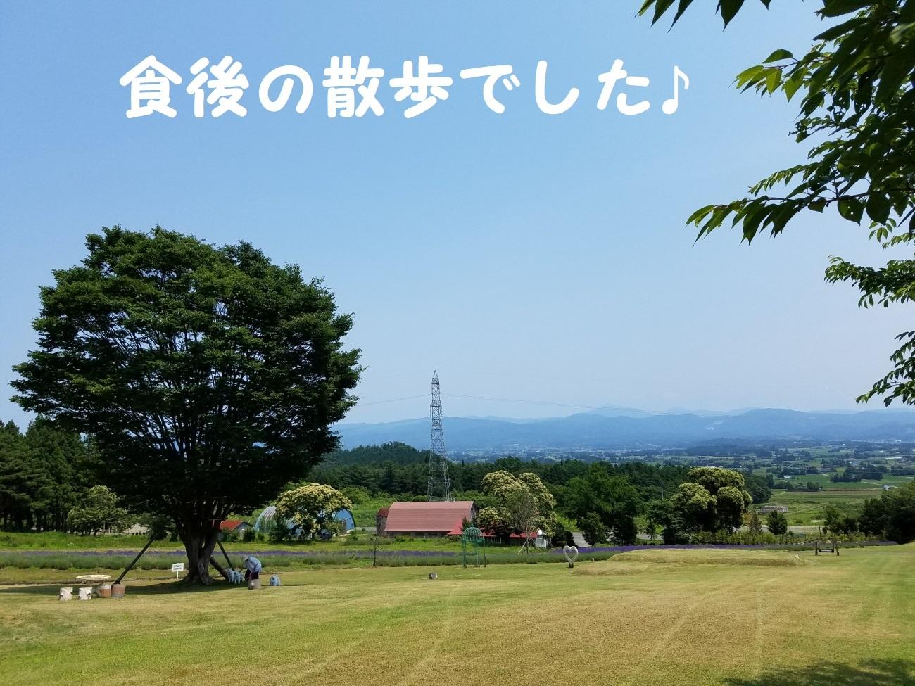 20170707_120534.jpg