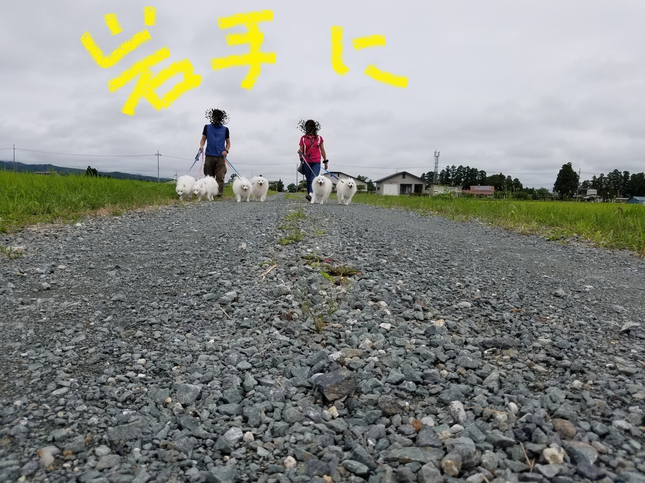 20170813_095519.jpg