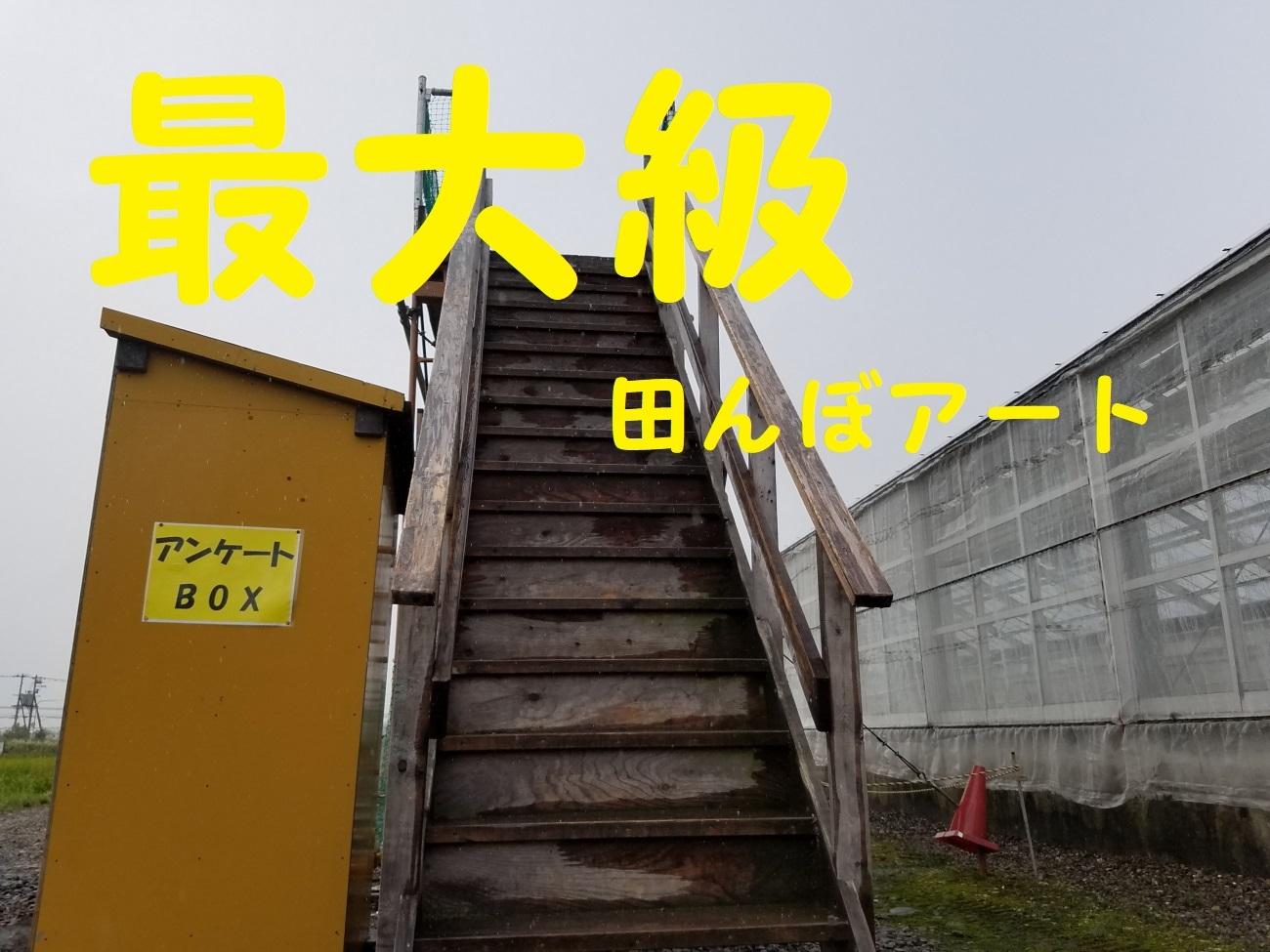 20170818_074058.jpg