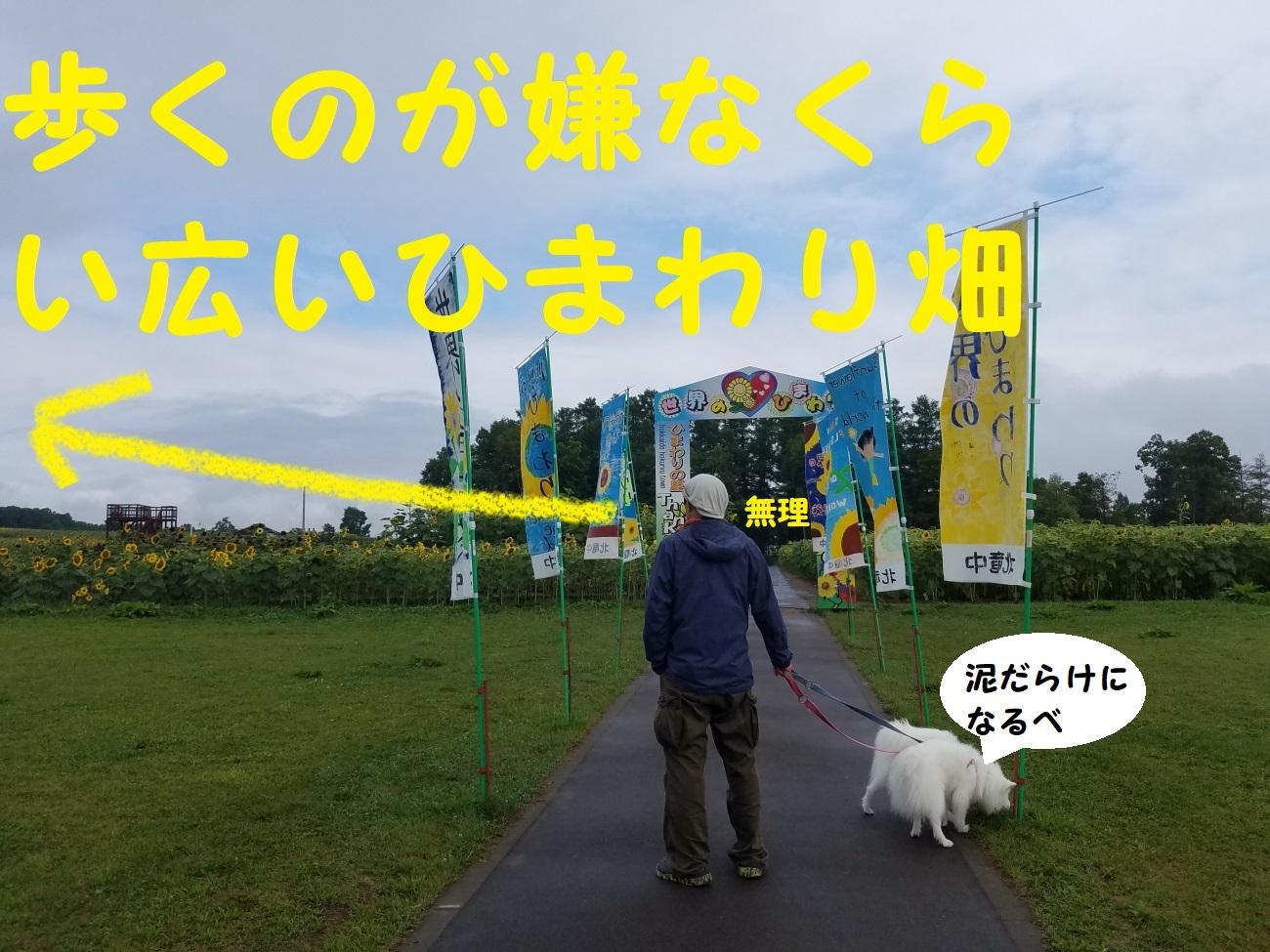20170818_081141.jpg