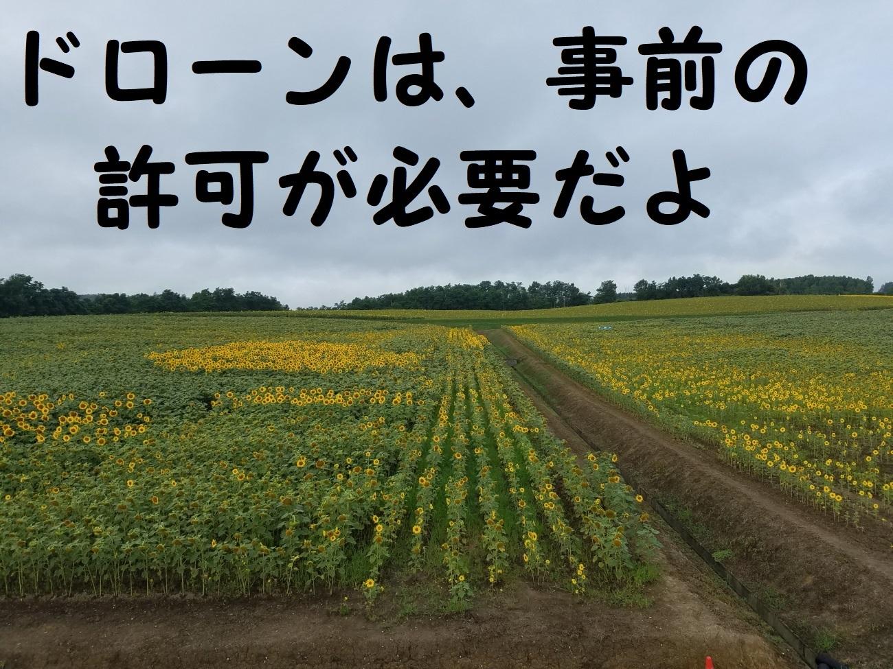 20170818_081703.jpg