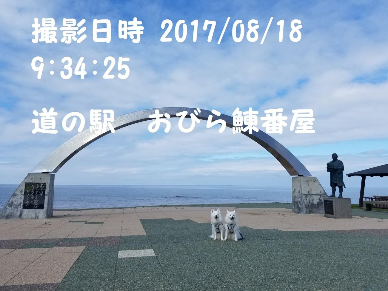 20170818_093425.jpg