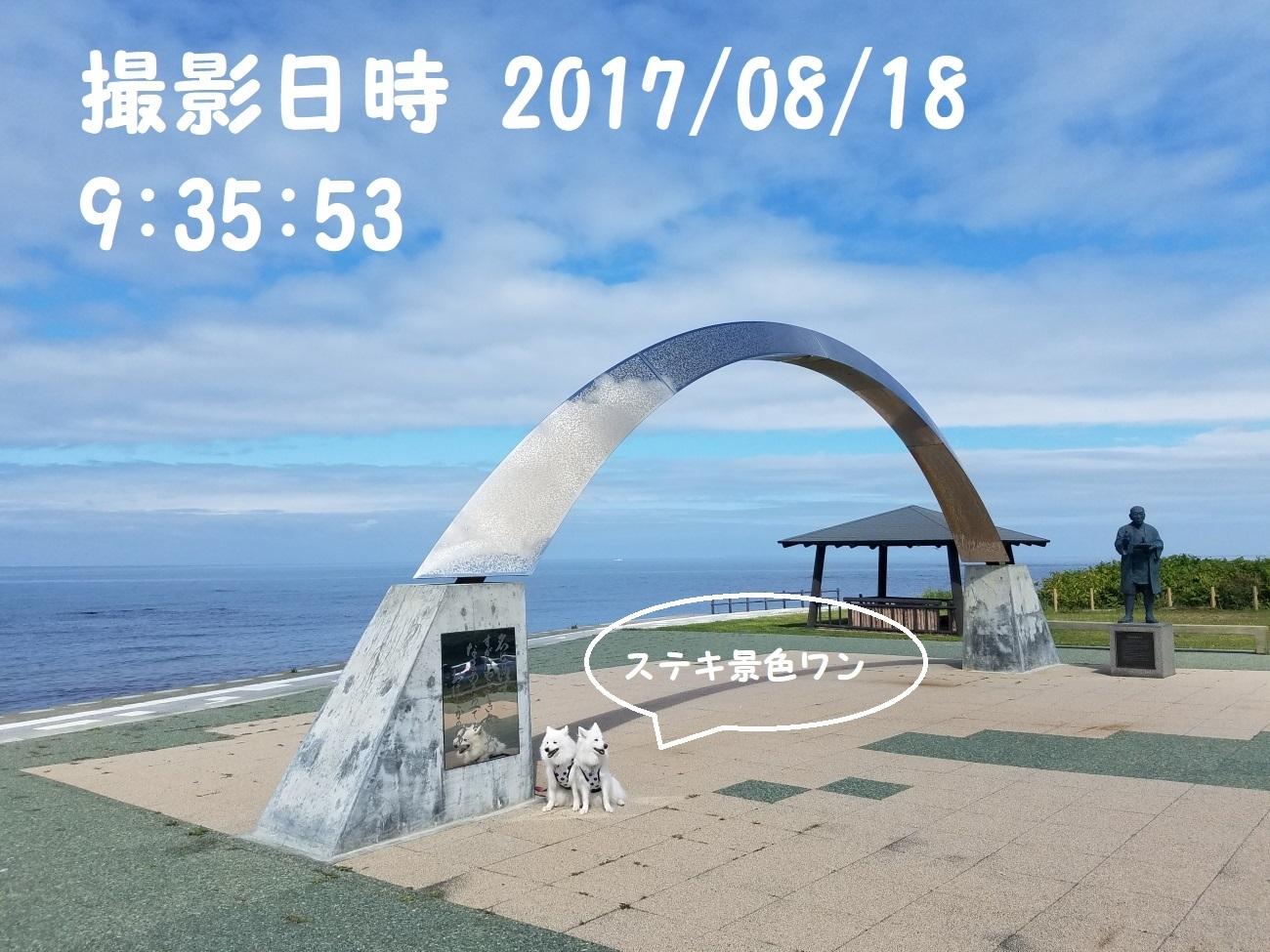 20170818_093554.jpg