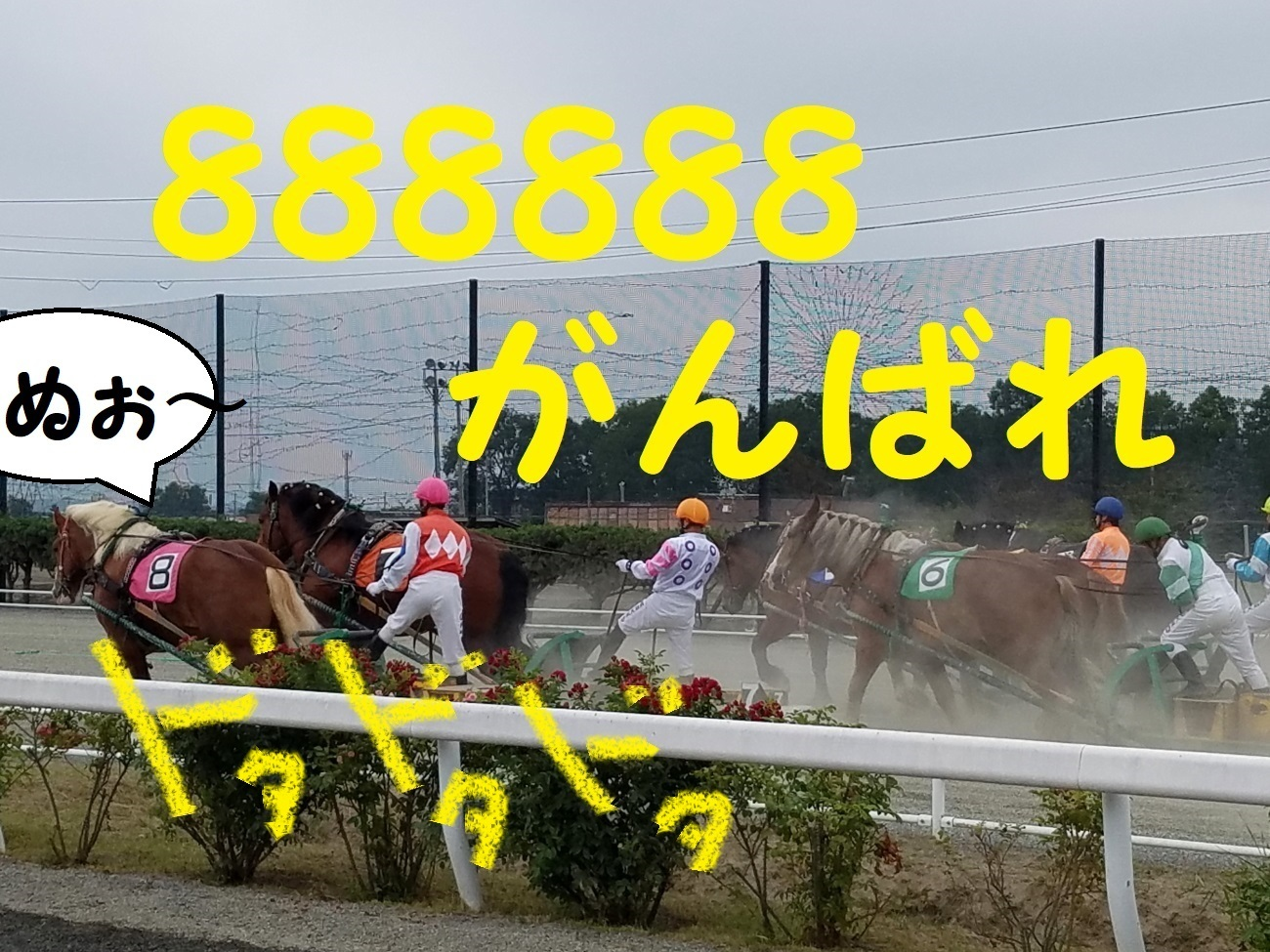 20170820_144044.jpg