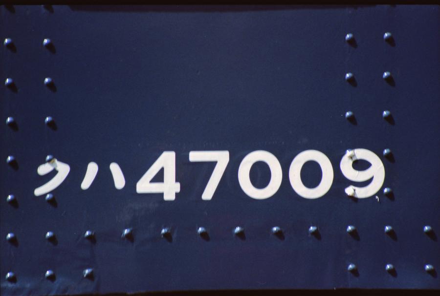 198304_0117.jpg