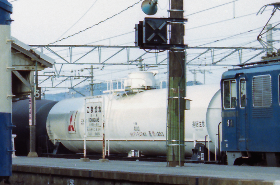198304b_0125-2.jpg