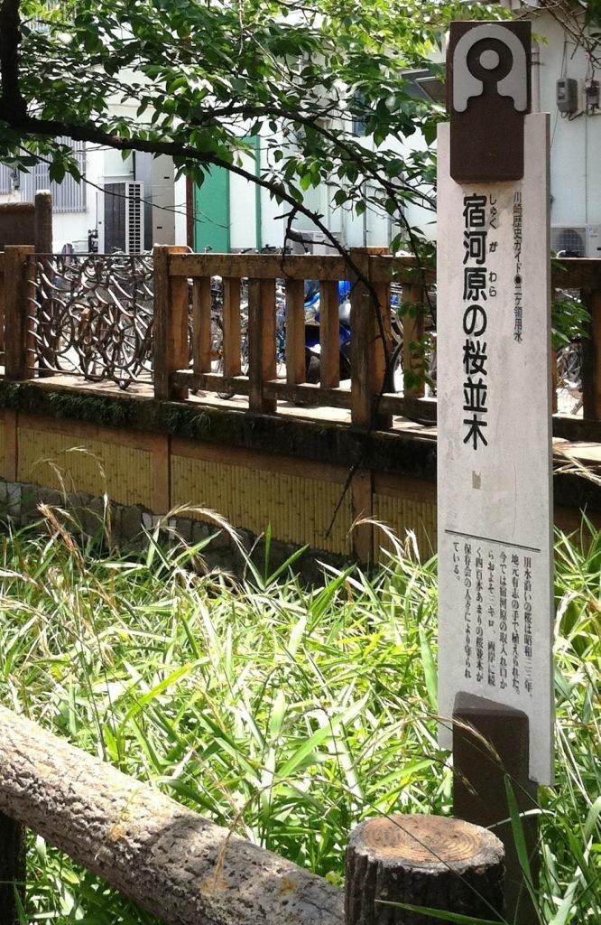 15 宿河原桜並木標識