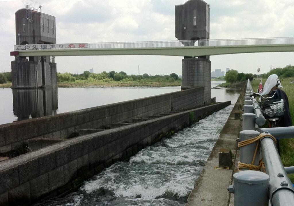 1稚鮎が遡上する宿川原堤の魚道