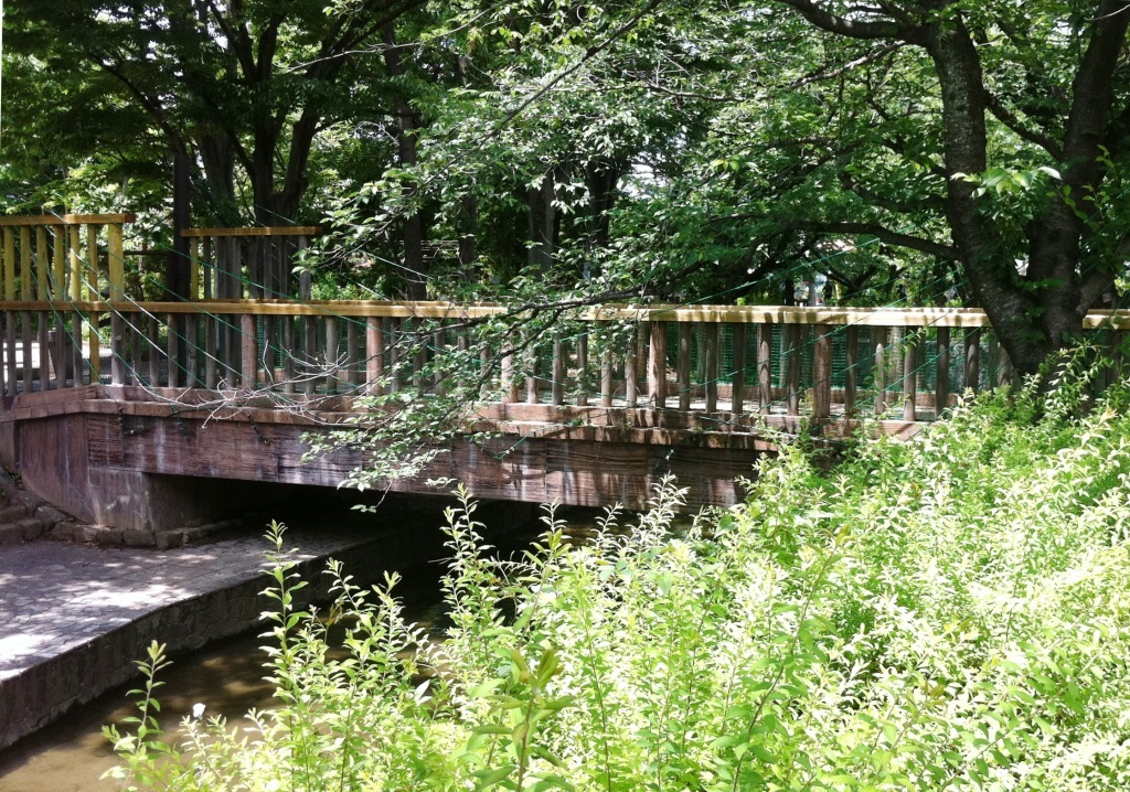 26 市緑化センターそばの緑の吊橋