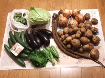 7/17 姉からもらった野菜