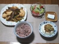 7/26 夕食 ナスと鶏のケチャ味噌炒め、トマトときゅうのサラダ、冷奴、黒米ご飯