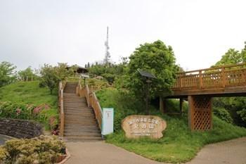 5/1 火の山公園  下関
