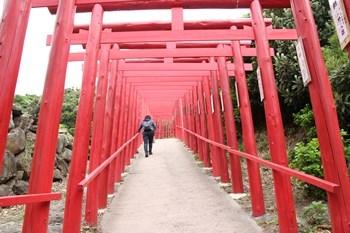 5/1 元乃隅稲成神社の鳥居