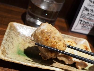 Ryoma_1702-107.jpg