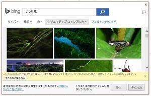 オンライン画像検索