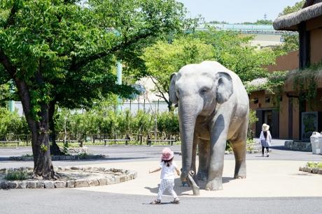 higashiyama_zoo_16.jpg
