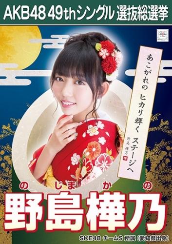 野島樺乃_AKB48 49thシングル選抜総選挙ポスター画像