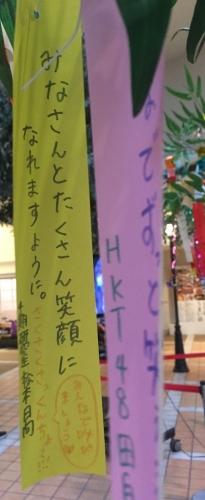 06松本日向