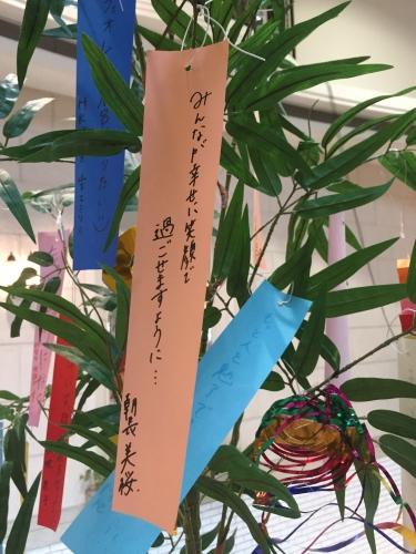 11朝長美桜