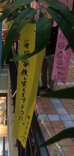 29田中優香