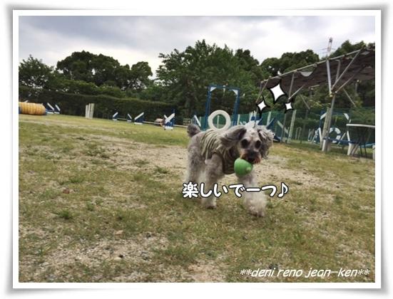 20170816_1b.jpg