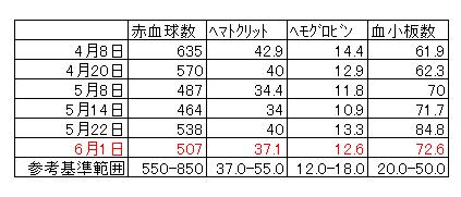 kensa_0601.png