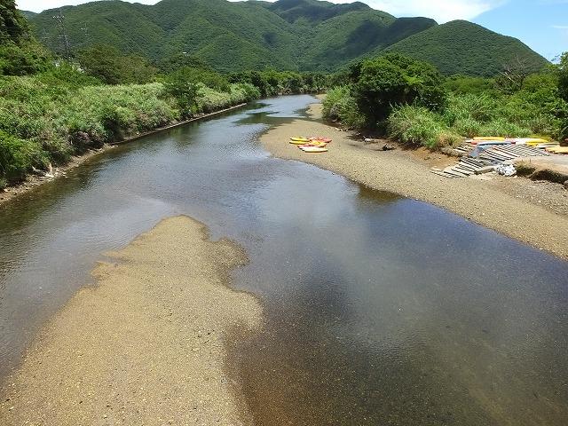 マングローブ干潮