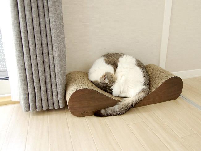 動かない猫を動かす術