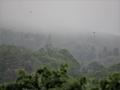 鷹が飛んだ霧山