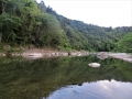 広瀬川の淵と青葉山.