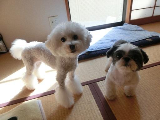 エミリ&ユキナ