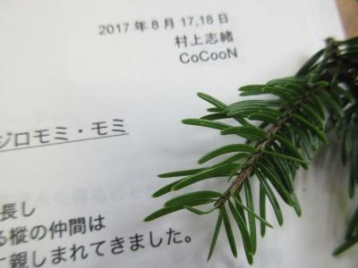 momi3_201708190000384dc.jpg