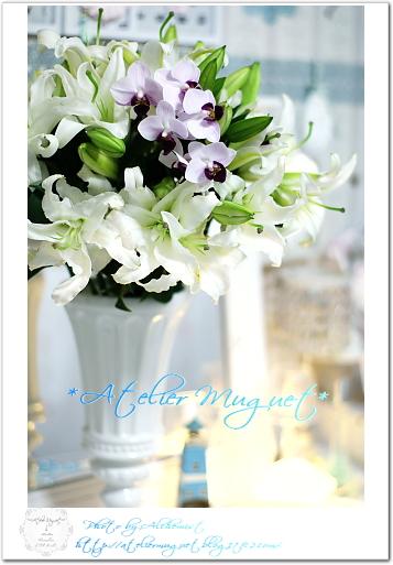 7-lily.jpg