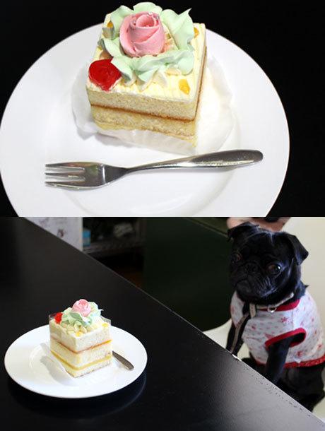 昨日ケーキ食べたよ~!