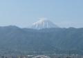 六月の富士
