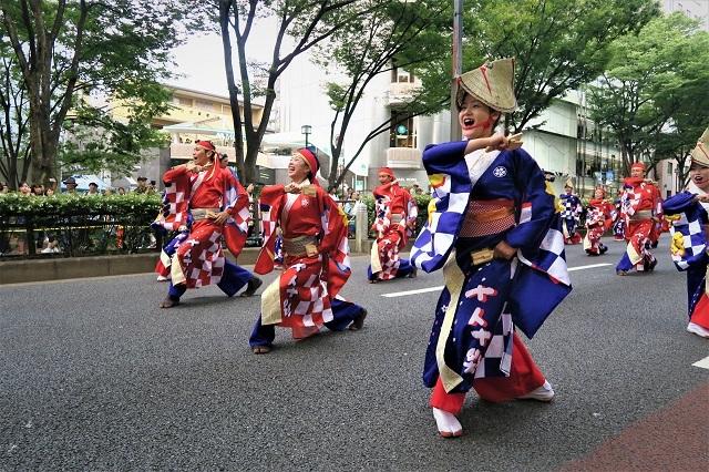 2017原宿スーパーよさこい(十人十彩/高知県)