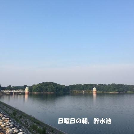 2017-07-10-1.jpg