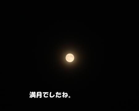 2017-09-07-1jpg.jpg