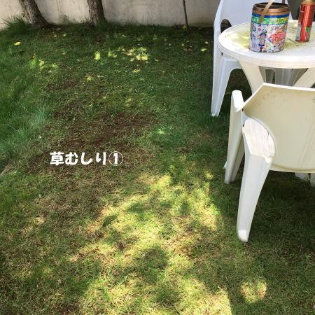 2017-09-10_6.jpg