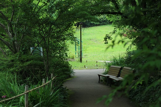 モネの庭4