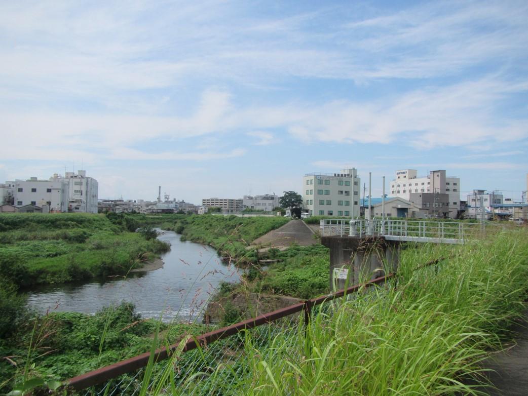 鶴見川と合流