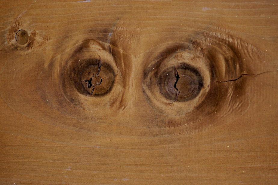 木目の類像現象