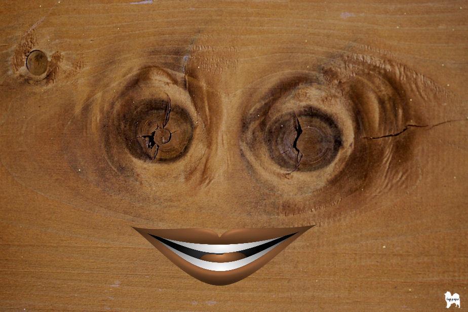 木目の類像現象+加工