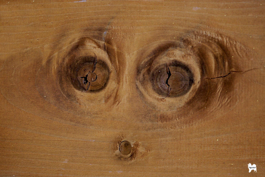木目の類像現象 +加工