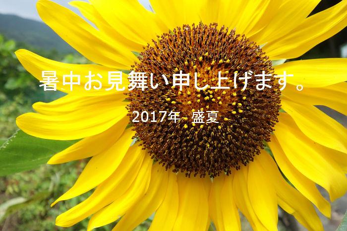 2017072901.jpg